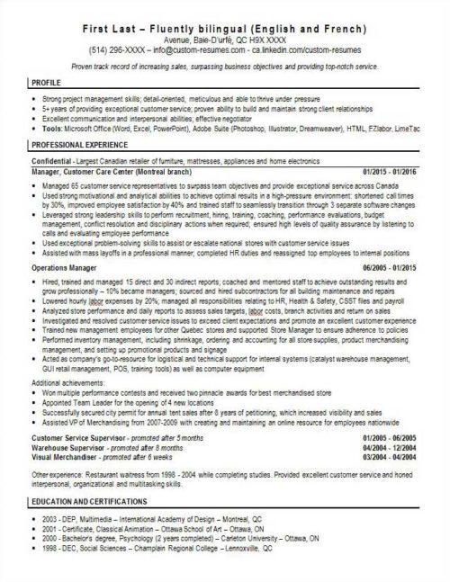 template 23 custom resumes